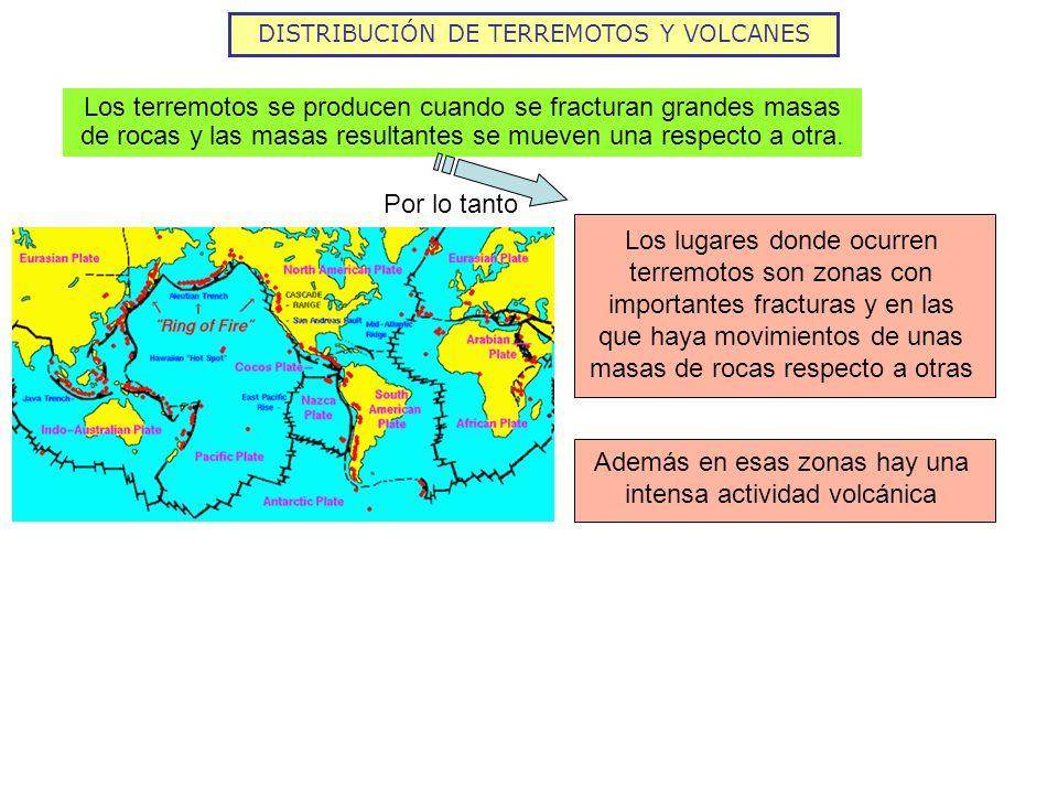DISTRIBUCIÓN DE TERREMOTOS Y VOLCANES Los terremotos se producen cuando se fracturan grandes masas de rocas y las masas resultantes se mueven una resp