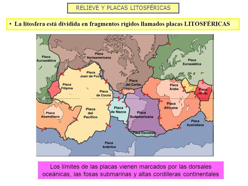 RELIEVE Y PLACAS LITOSFÉRICAS La litosfera está dividida en fragmentos rígidos llamados placas LITOSFÉRICAS Los límites de las placas vienen marcados