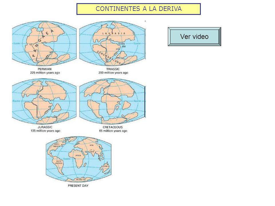 CONTINENTES A LA DERIVA Ver video