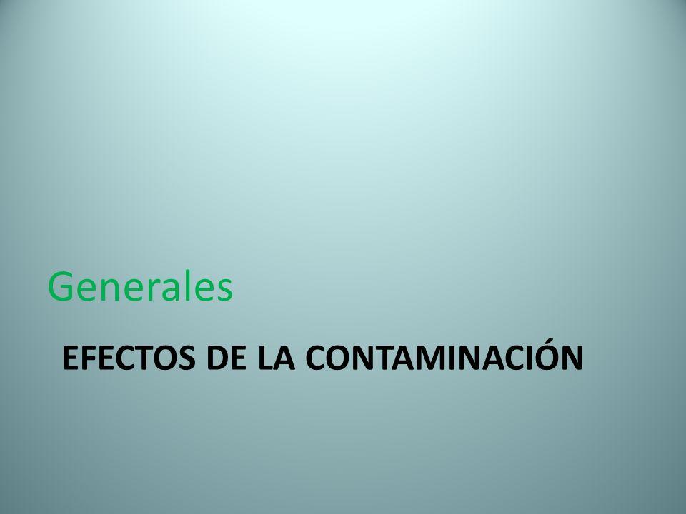 EFECTOS DE LA CONTAMINACIÓN Generales