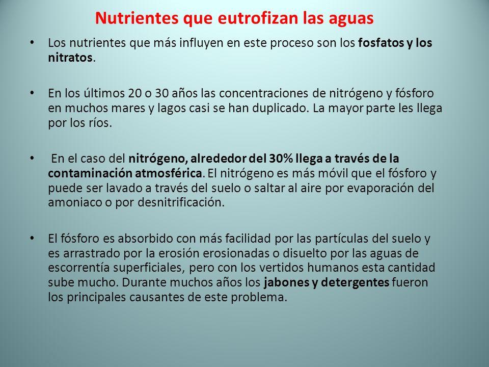 Nutrientes que eutrofizan las aguas Los nutrientes que más influyen en este proceso son los fosfatos y los nitratos. En los últimos 20 o 30 años las c