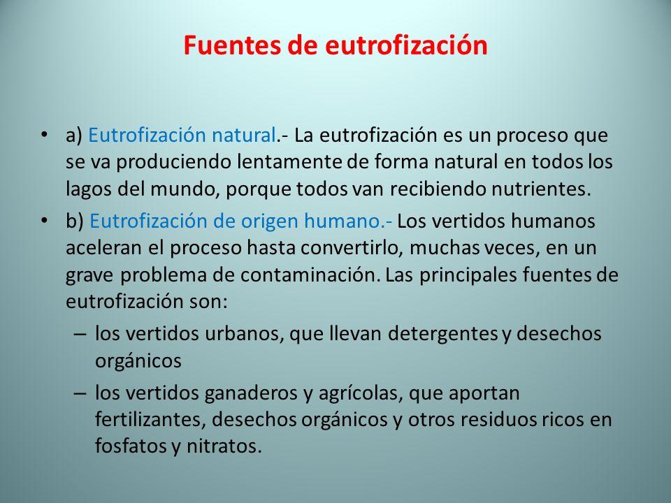 Fuentes de eutrofización a) Eutrofización natural.- La eutrofización es un proceso que se va produciendo lentamente de forma natural en todos los lago