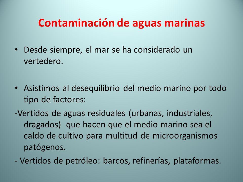 Contaminación de aguas marinas Desde siempre, el mar se ha considerado un vertedero. Asistimos al desequilibrio del medio marino por todo tipo de fact