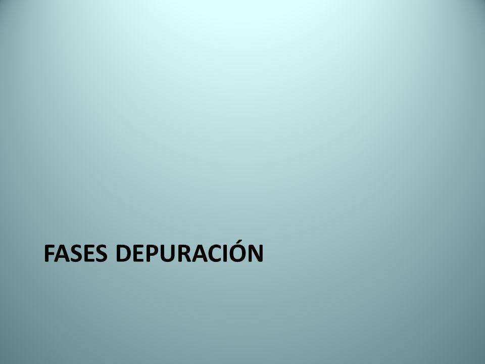 FASES DEPURACIÓN