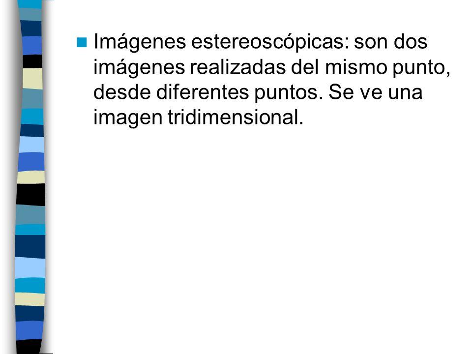Imágenes estereoscópicas: son dos imágenes realizadas del mismo punto, desde diferentes puntos. Se ve una imagen tridimensional.