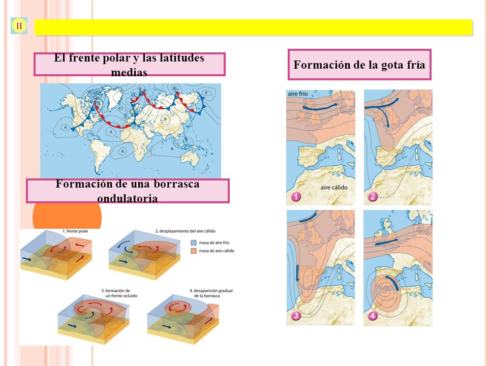 Atmósfera y clima El frente polar y las latitudes medias Formación de una borrasca ondulatoria Formación de la gota fría