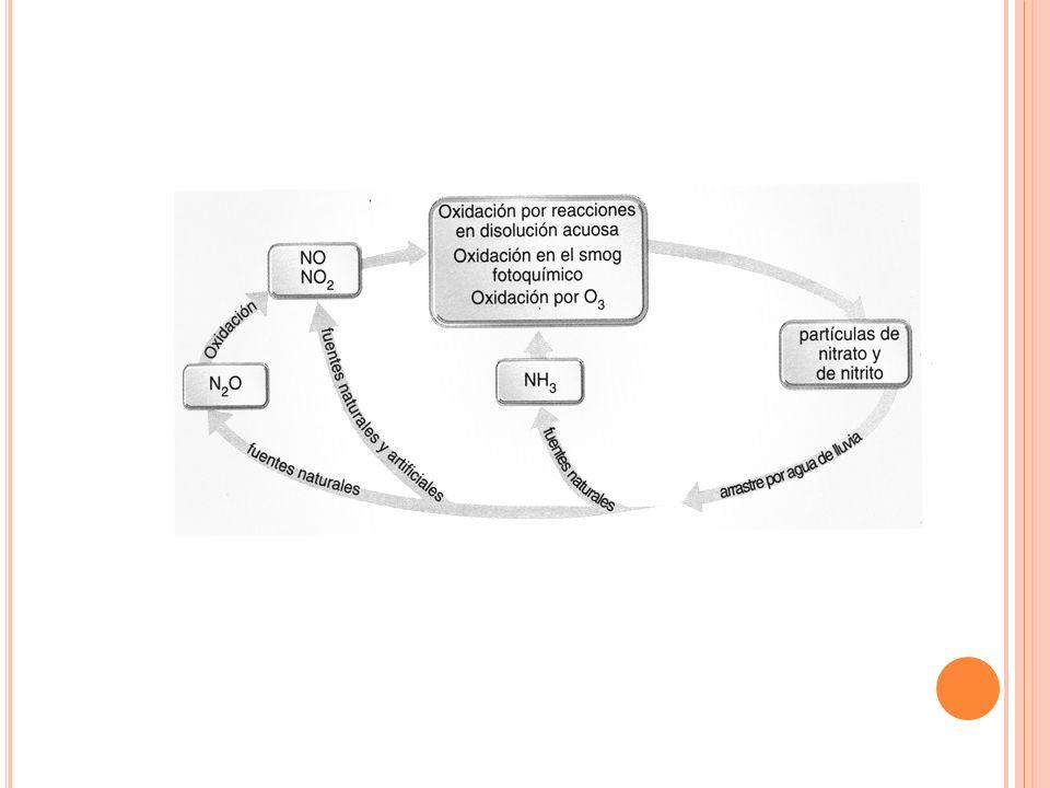 2.- ÓXIDOS DE NITRÓGENO Se detectan tres: Óxido nitroso (N2O): se emite de forma natural (actividad bacteriana)y no es tóxico. Óxido nítrico (NO): gas