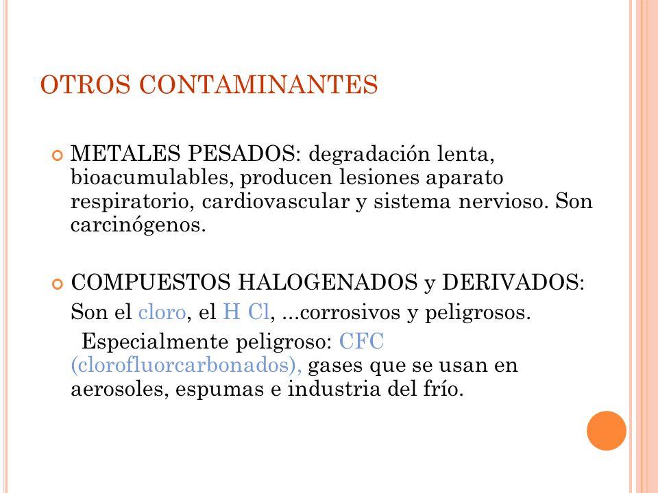 HIDROCARBUROS Importantes en las ciudades. La mayor parte es de origen natural aunque también se produce en el transporte a las refinerías, cremacione