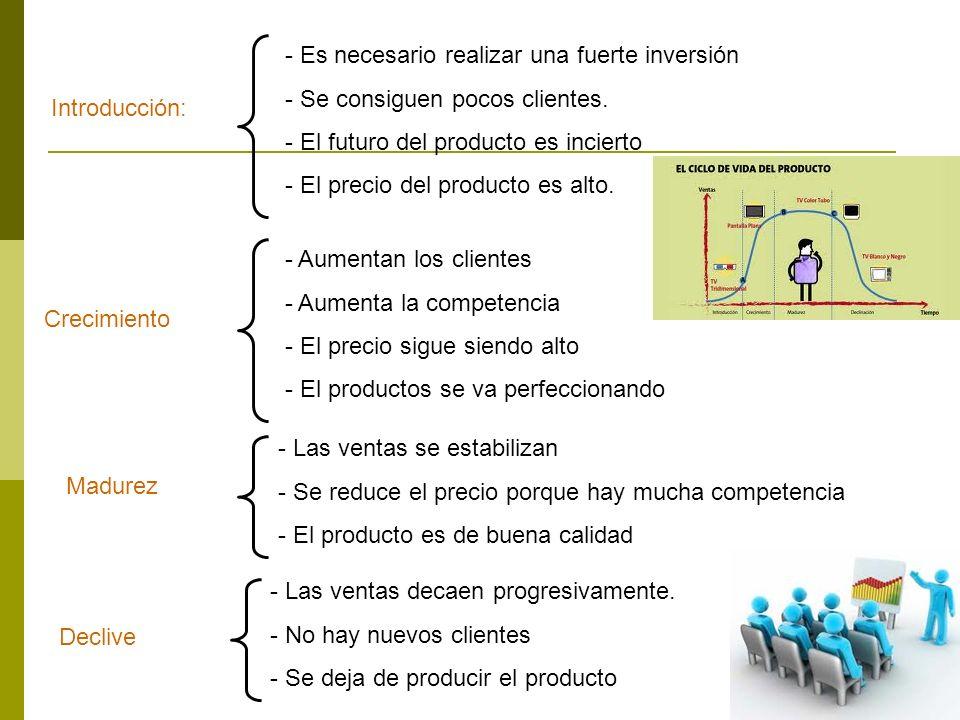 18 Introducción: - Es necesario realizar una fuerte inversión - Se consiguen pocos clientes. - El futuro del producto es incierto - El precio del prod