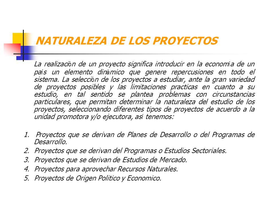Importancia de los Proyectos a. Permiten la materialización de los Planes de Desarrollo siempre que estén comprendidos dentro de las prioridades gener