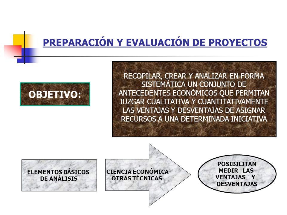 NATURALEZA DE LOS PROYECTOS La realizaci ó n de un proyecto significa introducir en la econom í a de un pa í s un elemento din á mico que genere reper
