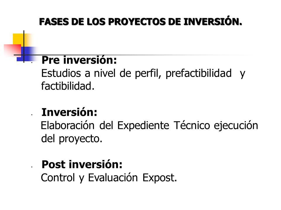 Fases de los Proyectos de Inversión. Banco de Proyectos. Viabilidad Programa Multianual de Inversión Pública. Sistema de Seguimiento y Monitoreo. Inst