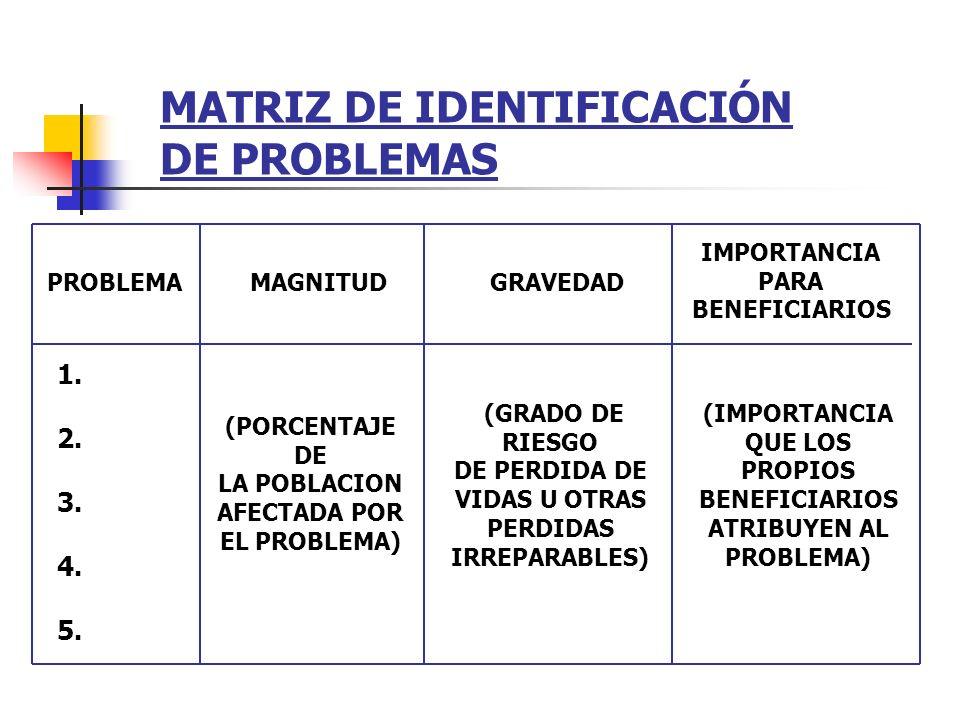 MATRIZ DE IDENTIFICACIÓN DE PROBLEMAS 1. 2. 3. 4. 5. (PORCENTAJE DE LA POBLACION AFECTADA POR EL PROBLEMA) (GRADO DE RIESGO DE PERDIDA DE VIDAS U OTRA