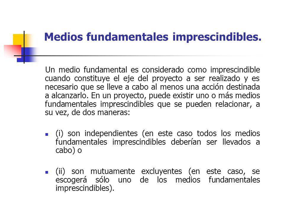Medios fundamentales imprescindibles. Un medio fundamental es considerado como imprescindible cuando constituye el eje del proyecto a ser realizado y