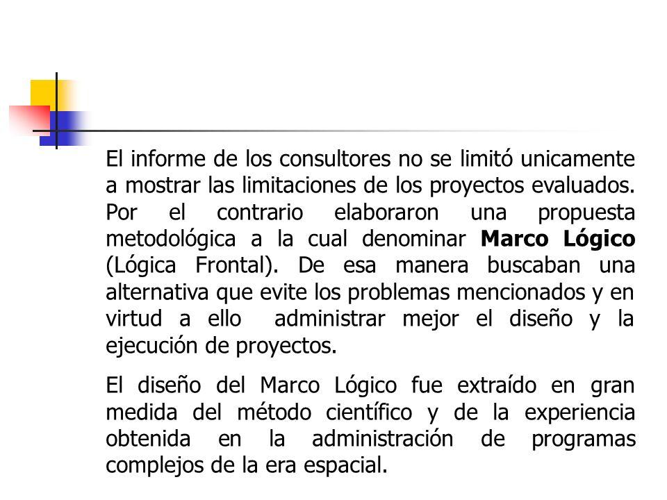 El informe de los consultores no se limitó unicamente a mostrar las limitaciones de los proyectos evaluados. Por el contrario elaboraron una propuesta