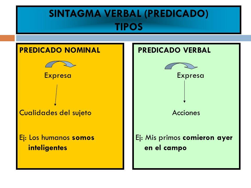 SINTAGMA VERBAL (PREDICADO) TIPOS PREDICADO NOMINAL Expresa Cualidades del sujeto Ej: Los humanos somos inteligentes PREDICADO VERBAL Expresa Acciones