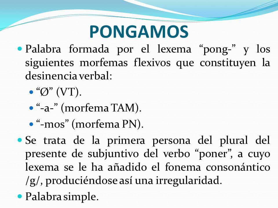 PONGAMOS Palabra formada por el lexema pong- y los siguientes morfemas flexivos que constituyen la desinencia verbal: Ø (VT). -a- (morfema TAM). -mos