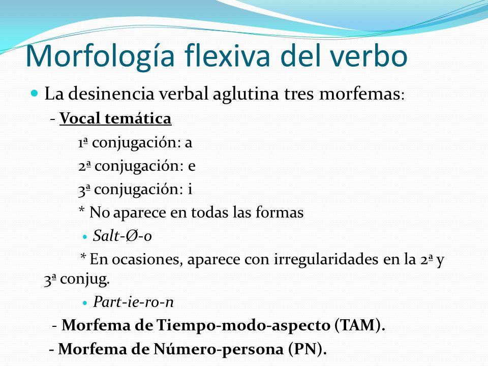 Morfología flexiva del verbo La desinencia verbal aglutina tres morfemas : - Vocal temática 1ª conjugación: a 2ª conjugación: e 3ª conjugación: i * No