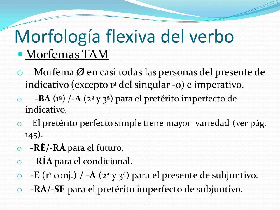 Morfología flexiva del verbo Morfemas TAM o Morfema Ø en casi todas las personas del presente de indicativo (excepto 1ª del singular -o) e imperativo.