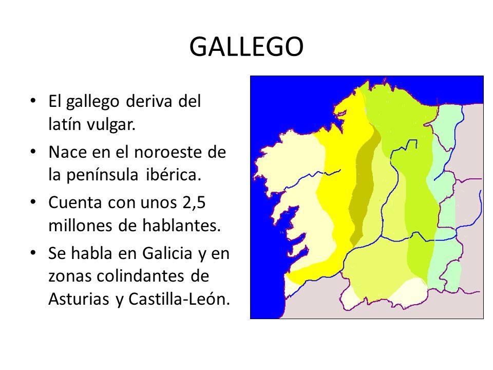 GALLEGO El gallego deriva del latín vulgar. Nace en el noroeste de la península ibérica. Cuenta con unos 2,5 millones de hablantes. Se habla en Galici