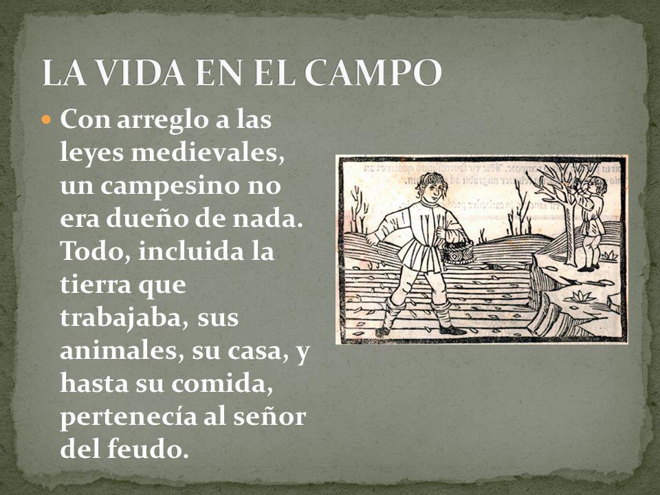 Con arreglo a las leyes medievales, un campesino no era dueño de nada. Todo, incluida la tierra que trabajaba, sus animales, su casa, y hasta su comid