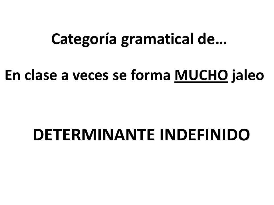 Categoría gramatical de… En clase a veces se forma MUCHO jaleo DETERMINANTE INDEFINIDO