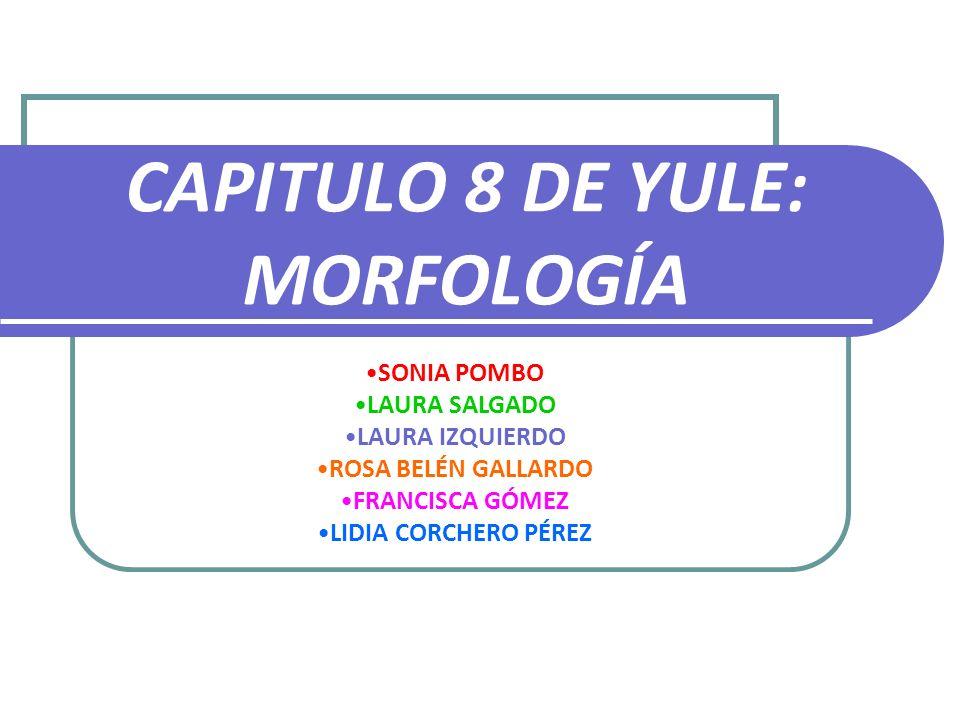 CAPITULO 8 DE YULE: MORFOLOGÍA SONIA POMBO LAURA SALGADO LAURA IZQUIERDO ROSA BELÉN GALLARDO FRANCISCA GÓMEZ LIDIA CORCHERO PÉREZ