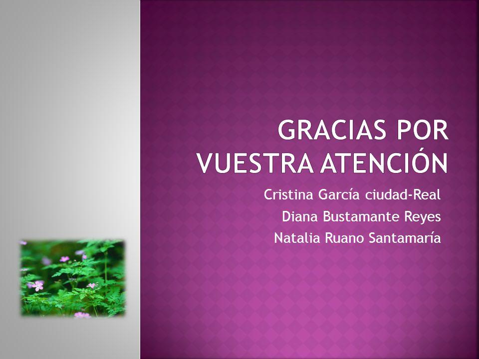 Cristina García ciudad-Real Diana Bustamante Reyes Natalia Ruano Santamaría