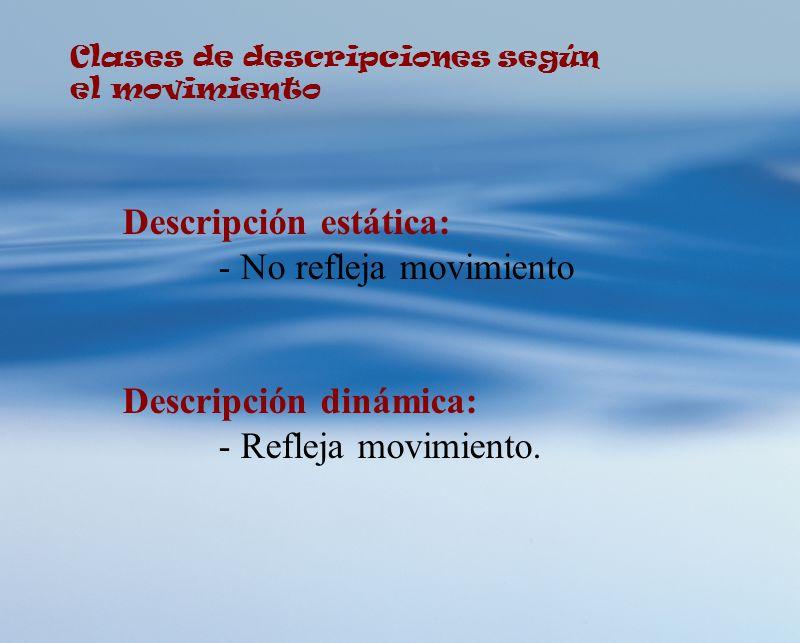 Clases de descripciones según el movimiento Descripción estática: - No refleja movimiento Descripción dinámica: - Refleja movimiento.