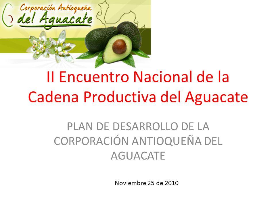 II Encuentro Nacional de la Cadena Productiva del Aguacate PLAN DE DESARROLLO DE LA CORPORACIÓN ANTIOQUEÑA DEL AGUACATE Noviembre 25 de 2010