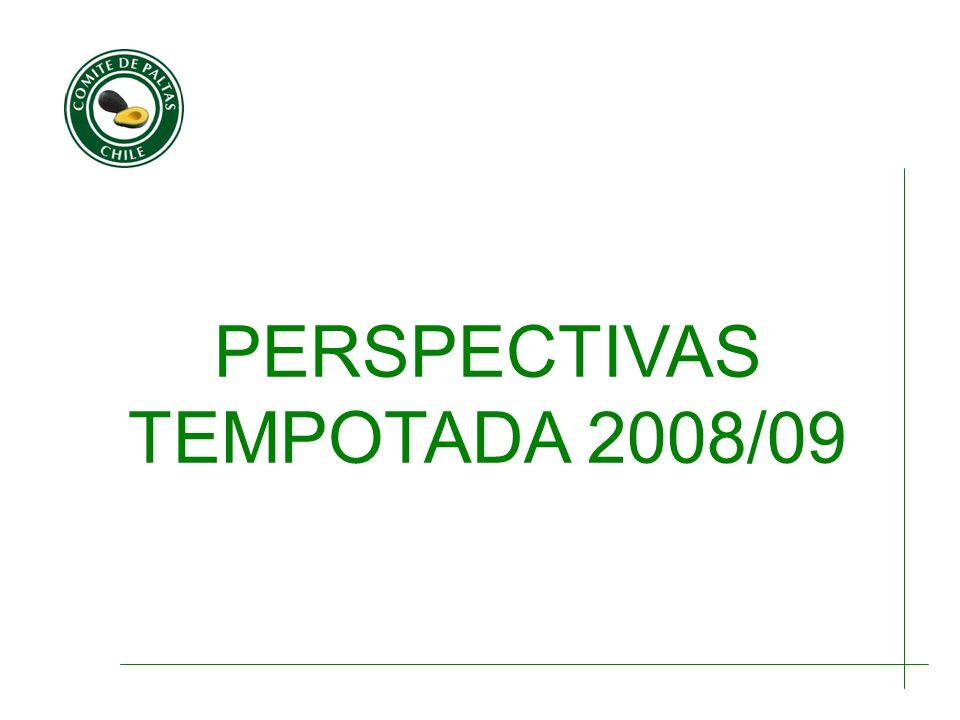 PERSPECTIVAS TEMPOTADA 2008/09