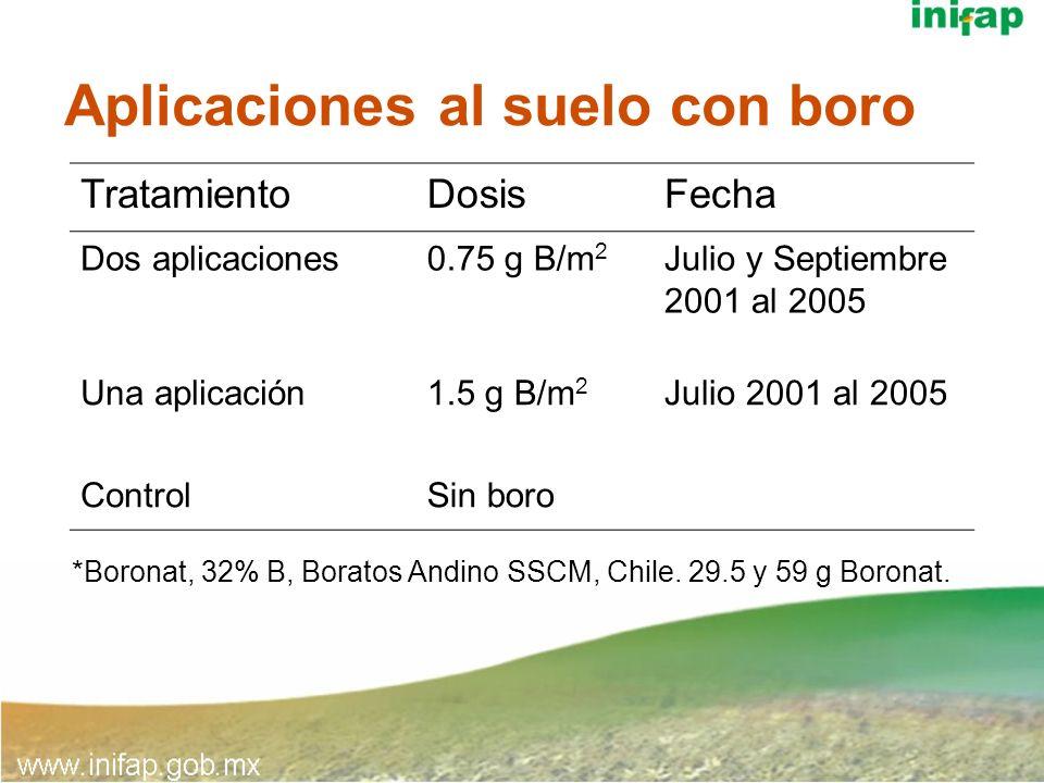 Aplicaciones al suelo con boro TratamientoDosisFecha Dos aplicaciones0.75 g B/m 2 Julio y Septiembre 2001 al 2005 Una aplicación1.5 g B/m 2 Julio 2001