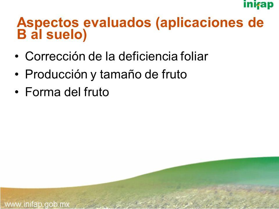 Aspectos evaluados (aplicaciones de B al suelo) Corrección de la deficiencia foliar Producción y tamaño de fruto Forma del fruto