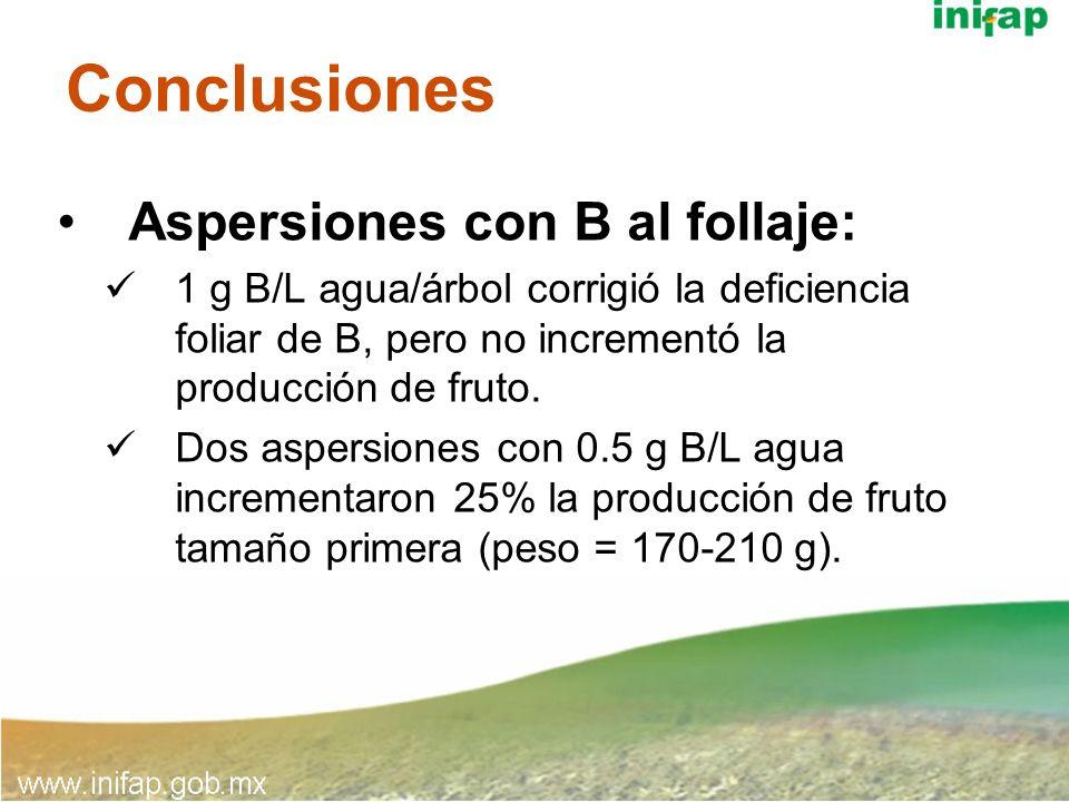 Conclusiones Aspersiones con B al follaje: 1 g B/L agua/árbol corrigió la deficiencia foliar de B, pero no incrementó la producción de fruto. Dos aspe