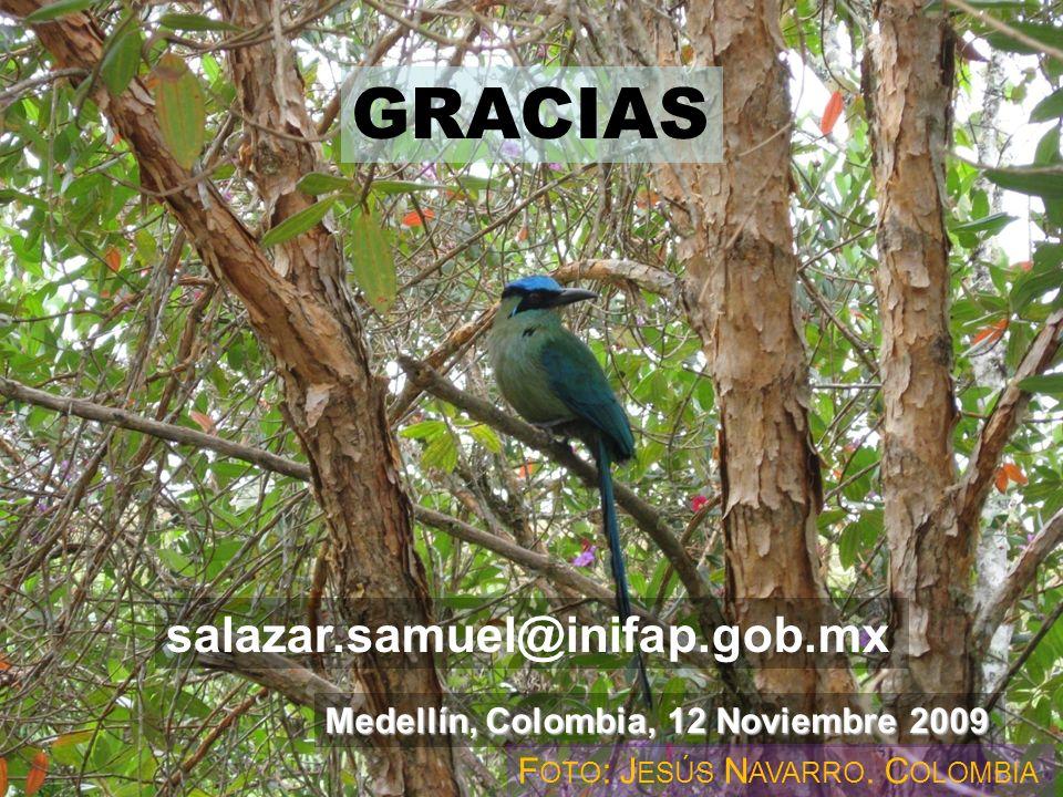 Gracias ! Medellín, Colombia, 12 Noviembre 2009 salazar.samuel@inifap.gob.mx F OTO : J ESÚS N AVARRO. C OLOMBIA GRACIAS