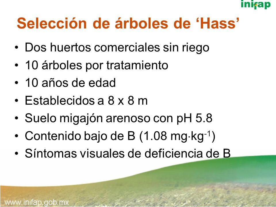 Aspersiones foliares con B TratamientoDosisFecha Dos aspersiones0.5 g B/L agua/árbol Marzo y Abril 2001 y 2002 Una aspersión1 g B/L agua/árbol Marzo 2001 y 2002 ControlSin boro *Folboro, 10% B, Ducor, México.