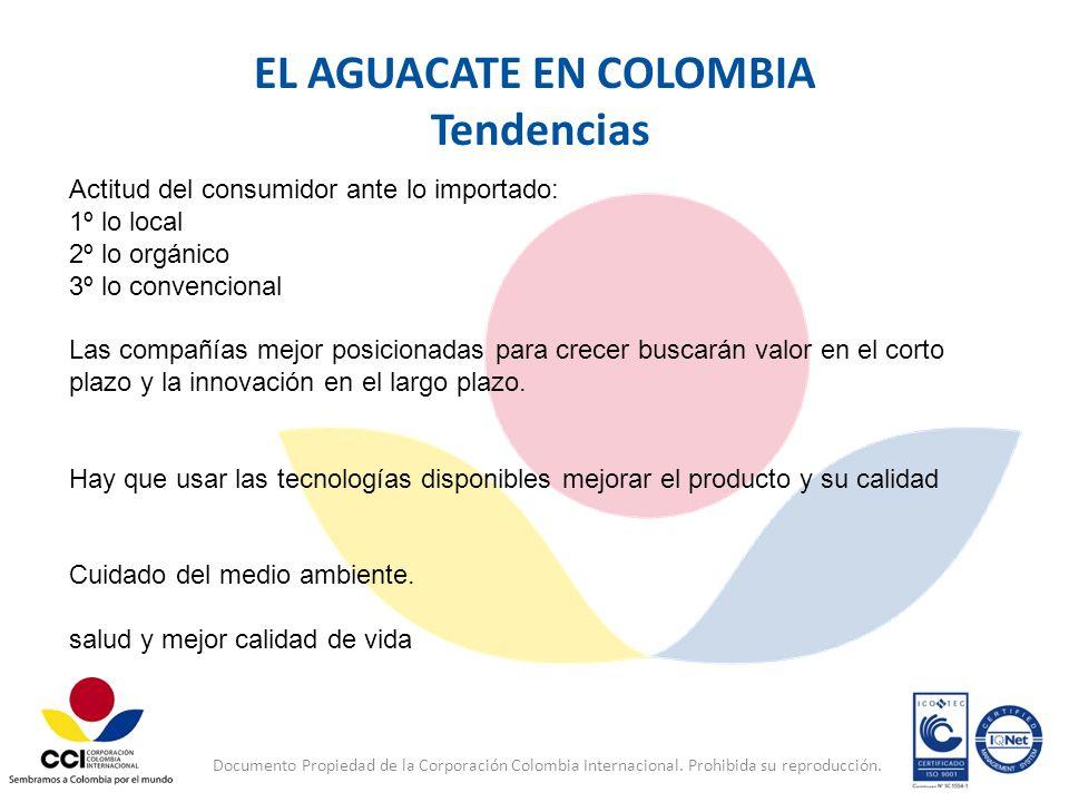 Documento Propiedad de la Corporación Colombia Internacional. Prohibida su reproducción. EL AGUACATE EN COLOMBIA Tendencias Actitud del consumidor ant