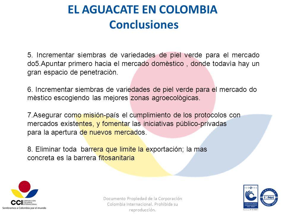 Documento Propiedad de la Corporación Colombia Internacional. Prohibida su reproducción. 5. Incrementar siembras de variedades de piel verde para el m