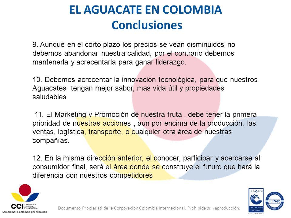 Documento Propiedad de la Corporación Colombia Internacional. Prohibida su reproducción. EL AGUACATE EN COLOMBIA Conclusiones 9. Aunque en el corto pl