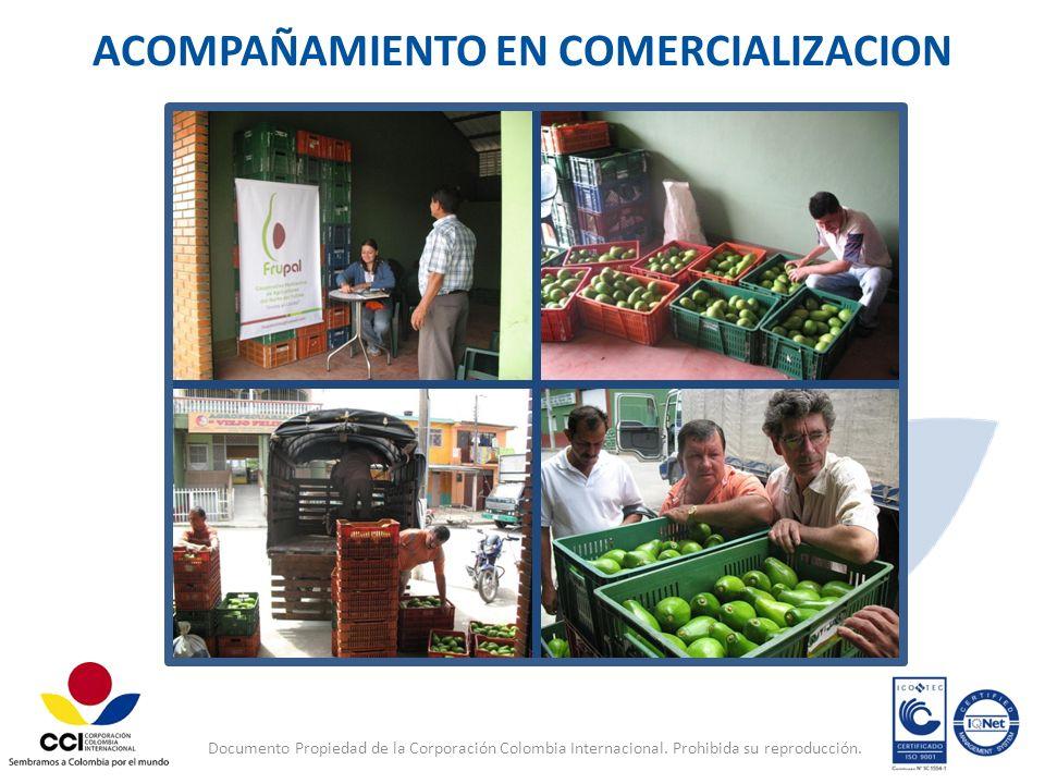 Documento Propiedad de la Corporación Colombia Internacional. Prohibida su reproducción. ACOMPAÑAMIENTO EN COMERCIALIZACION