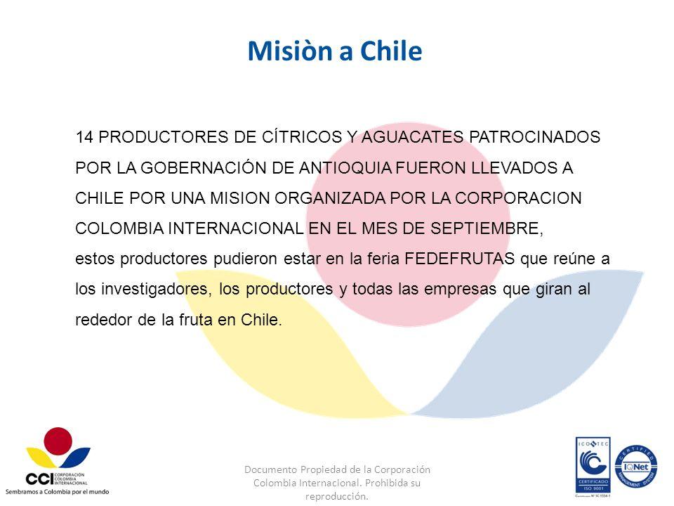 Documento Propiedad de la Corporación Colombia Internacional. Prohibida su reproducción. Misiòn a Chile 14 PRODUCTORES DE CÍTRICOS Y AGUACATES PATROCI