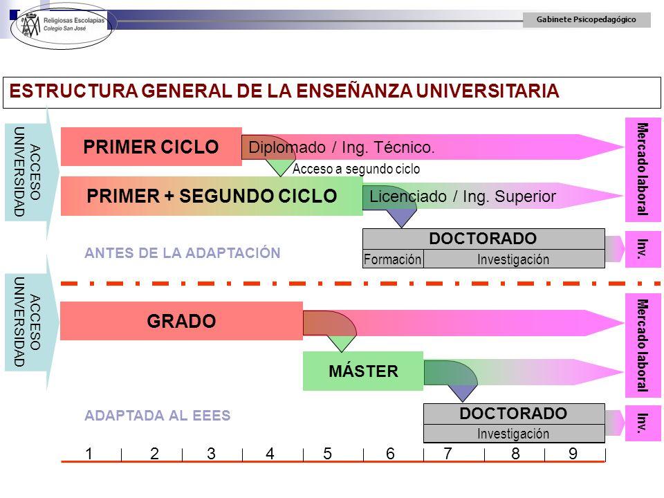 Gabinete Psicopedagógico ESTRUCTURA GENERAL DE LA ENSEÑANZA UNIVERSITARIA PRIMER CICLO Mercado laboral Inv. ACCESO UNIVERSIDAD PRIMER + SEGUNDO CICLO