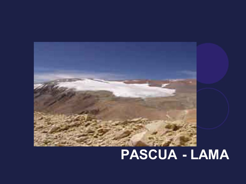PASCUA - LAMA