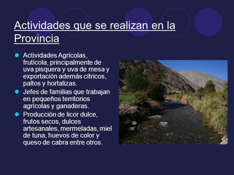 Actividades que se realizan en la Provincia Actividades Agrícolas, frutícola, principalmente de uva pisquera y uva de mesa y exportación además cítric