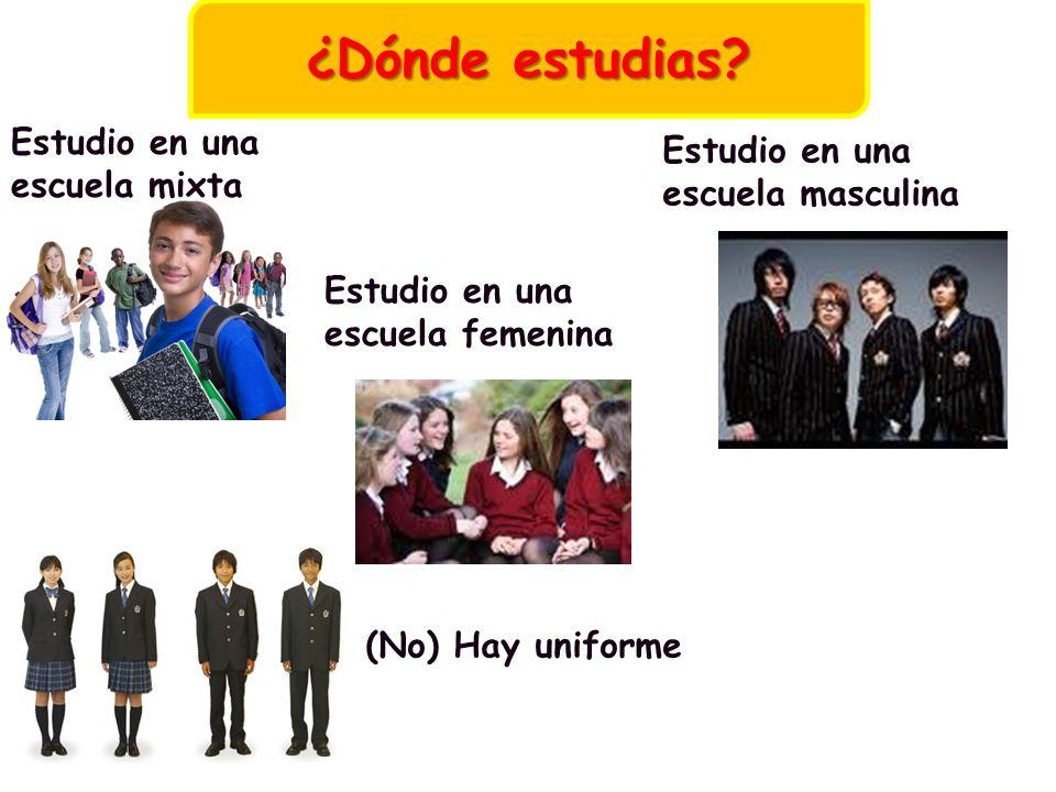 Estudio en una escuela mixta Estudio en una escuela femenina Estudio en una escuela masculina (No) Hay uniforme ¿Dónde estudias?