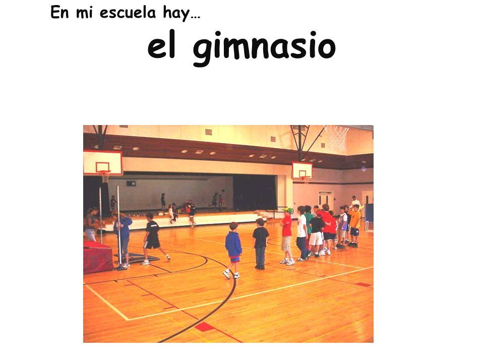 el gimnasio En mi escuela hay…