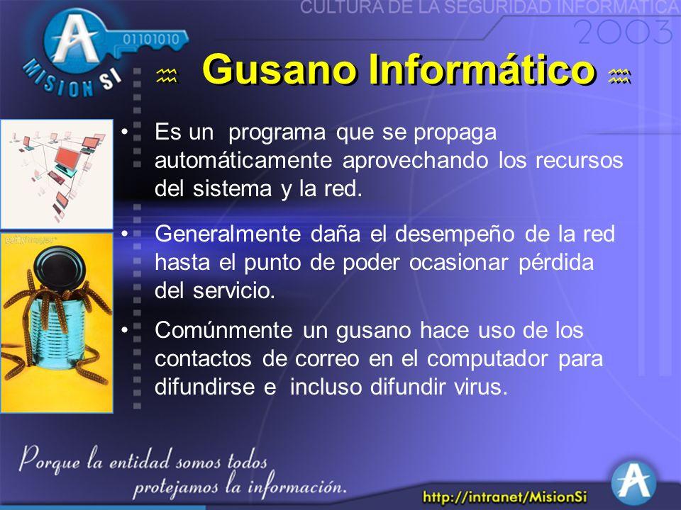 Gusano Informático Es un programa que se propaga automáticamente aprovechando los recursos del sistema y la red.