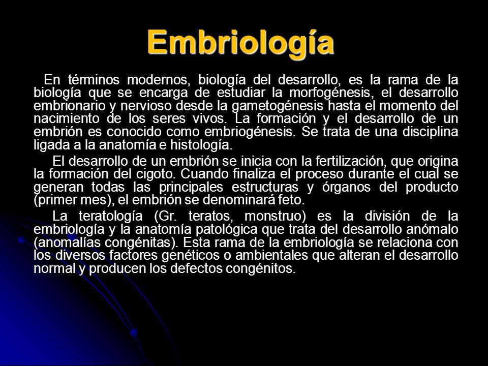 Embriología En términos modernos, biología del desarrollo, es la rama de la biología que se encarga de estudiar la morfogénesis, el desarrollo embrion