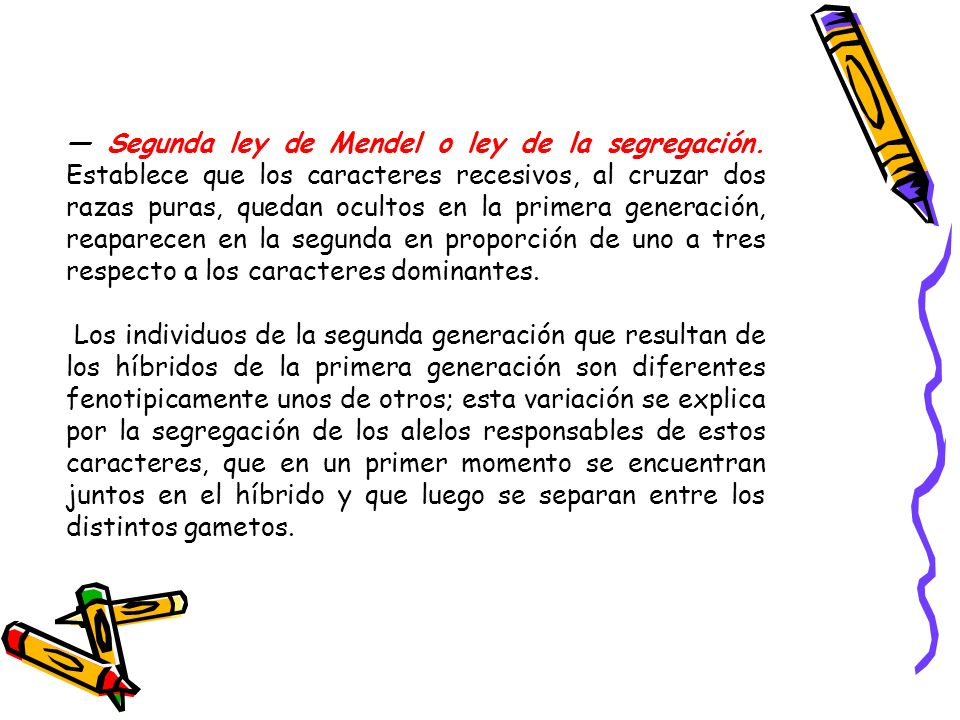 Segunda ley de Mendel o ley de la segregación. Establece que los caracteres recesivos, al cruzar dos razas puras, quedan ocultos en la primera generac