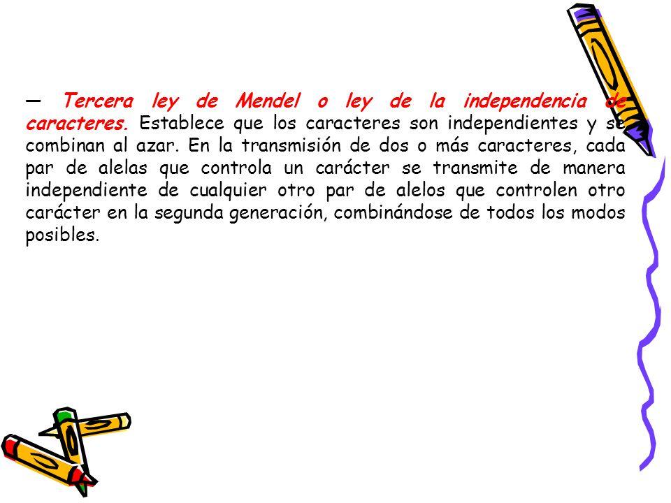 Tercera ley de Mendel o ley de la independencia de caracteres. Establece que los caracteres son independientes y se combinan al azar. En la transmisió